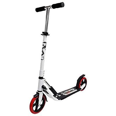 Fun Trottinette Big Wheel