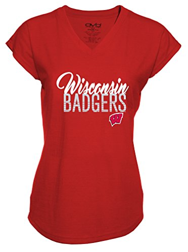 NCAA Wisconsin Badgers Ladies Tri-Blend V-Neck T-Shirt, Large, Red -