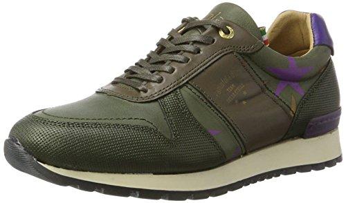 Teramo Low Olive Stelle Donne Donna 52a Pantofola d'Oro Sneaker Verde qx6CfU