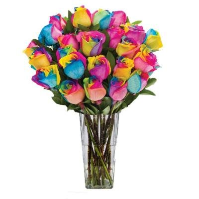 VALENTINES DAY FLOWERS ROSES RAINBOW ULTIMATE BOUQUET 24 STEM IN CLEAR VASE