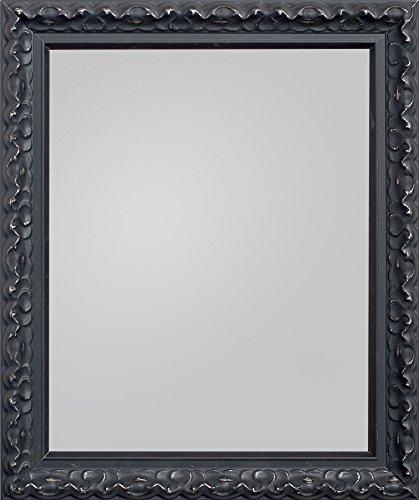 Frame Company Charleston Range Framed Mirror, Black, 30 x 20-Inch ...