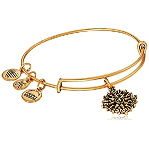 Alex and ANI Compass III Bangle Bracelet