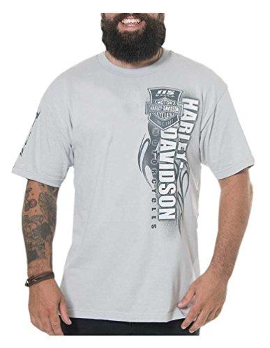 (Harley-Davidson Men's 115th Anniversary Tenacity Short Sleeve Tee, Silver)