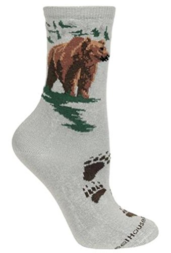 Grizzly Bear on Gray Socks 9-11, PH153M