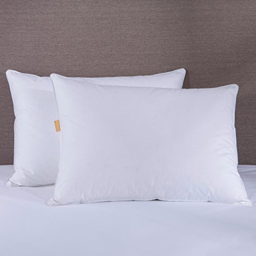 Puredown White Goose Feather and Down Pillows,Set of 2, Standard/Queen Size 20