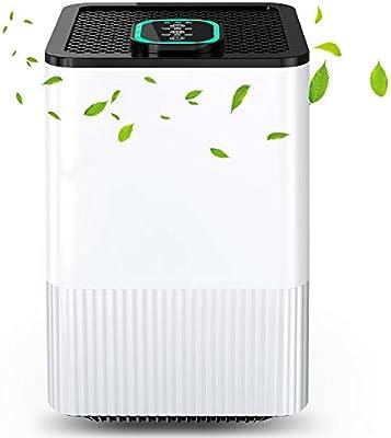 Purificador de aire alergia