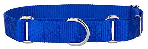 Country Brook DesignMartingale Heavyduty Nylon Dog Collar - Royal Blue - Medium