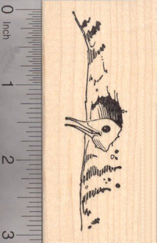 Northern Flicker Rubber Stamp, AKA Yellowhammer, Gaffer Woodpecker Bird ()