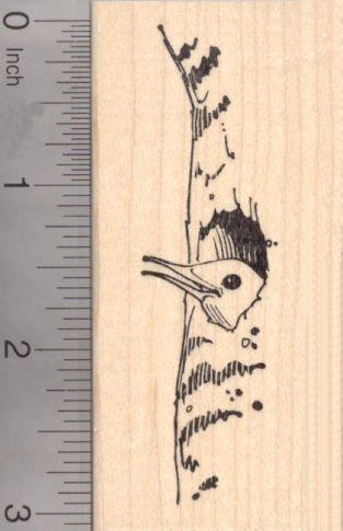 Northern Flicker Rubber Stamp, AKA Yellowhammer, Gaffer Woodpecker Bird (Northern Flicker Woodpecker)