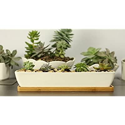 11inch Long Rectangle White Ceramic Succulent Planter Pots/Mini Flower Plant Containers with Bamboo Saucers. Product Size:11x2.36x1.77inch, not Include The Plant. (Long Rectangle) : Garden & Outdoor