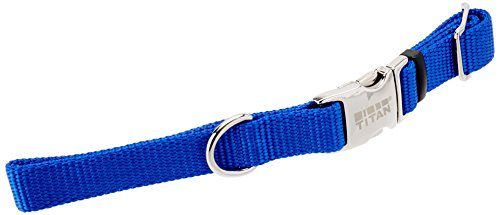 Coastal Pet Products DCP6140114BLU Adjustable Strap with Metal Buckle for Dogs, 5/8-Inch, Blue