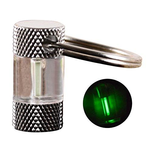 Key Chain Tube Lamp Self Luminous Fluorescent Vial Key Ring Hurricane Emergency Survival Lights for Outdoor(Green)