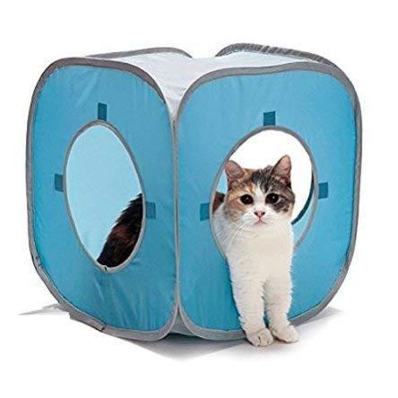 STSSLTD - Caja de cartón para gatos y gatos, resistente a los juguetes, diseño de gato en 3D, plegable, plegable y libro electrónico: Amazon.es: Productos ...