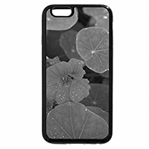 iPhone 6S Case, iPhone 6 Case (Black & White) - nature red green flowers