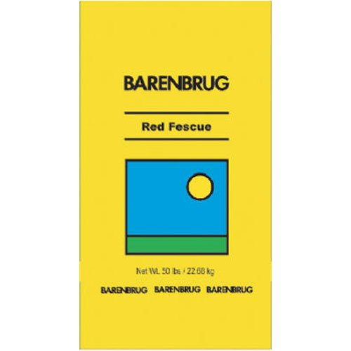 BARENBRUG USA 491137 50 lb Pro Red Fescue Seed