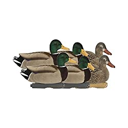 Avery Pg Ffd Elite Mallards-active (6 Pack) 74105