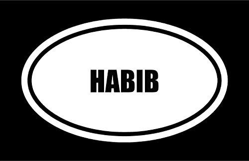 6-die-cut-white-vinyl-habib-name-oval-euro-style-vinyl-decal-sticker