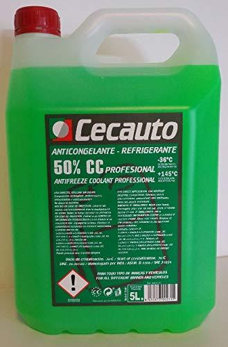 Cecauto anticongelante 50% g12 Verde organico: Amazon.es ...