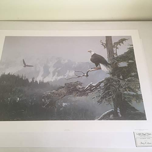 Limited Edition Print On Eagles' Wings-Terry Isaac