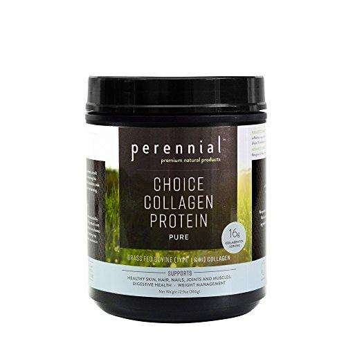 Perennial - Choice Collagen Protein Drink Powder - Grass Fed Hydrolyzed Bovine Hide Collagen Peptides - 12.9oz, Pure