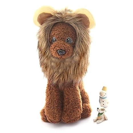 Xinjiener Suéteres de Perro Mascota Peluca Divertida Cabeza de León Sombrero de Gato Adorno de Mascota Sombrero de Mascota M: Amazon.es: Productos para ...