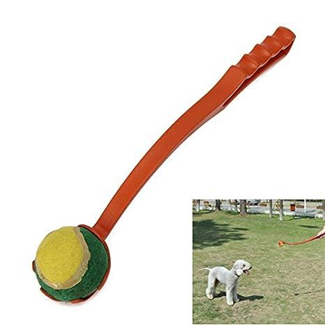Mascota Perro Cachorro Exterior Herramienta De Formación Bola ...