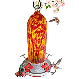 Hummingbird Feeder - Hand Blown Glass - Fiery Bell Tower