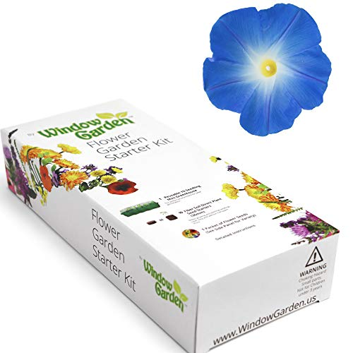 Garden Starter Kit (Morning Glory) Grow a Garden by Seed. Germinate Seeds on Your Windowsill Then Move to a Patio Planter or Flower Patch. Mini Greenhouse System Makes it Foolproof, ()