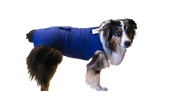 Surgi Snuggly e cuello alternativa, creado por un veterinario específicamente para adaptarse a su perro, mediano/corto: Amazon.es: Productos para mascotas