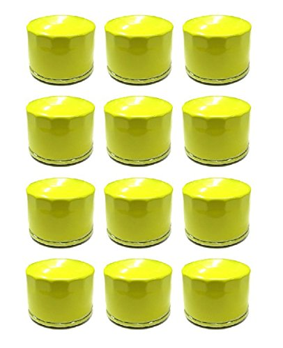 12 New Oil Filter for Briggs & Stratton PRO Series Engines 696854 Extended Life by The ROP Shop