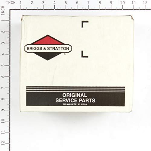 Briggs & Stratton 555721 Gear Case Genuine Original