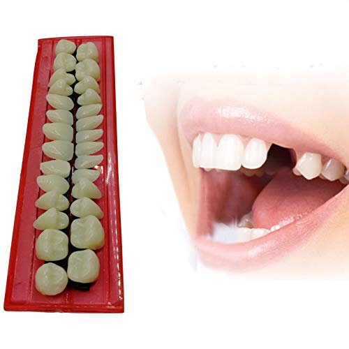 Fabura 28pcs Multifunctional Acrylic Resin Teeth Model, Dental Standard Typodont Teeth Teaching Model, Student Adult Study Practice Demonstration Denture Tooth Model, DIY for Halloween Horror Prop]()