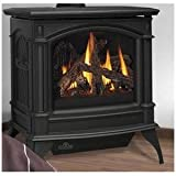 Napoleon GDS60-1N Fireplace, Natural Gas Stove Direct Vent 35,000 BTU - Painted Metallic Black