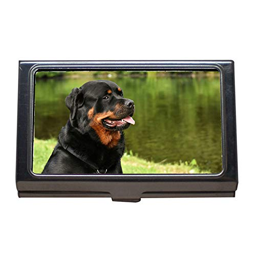 - Business Card Holder,Rottweiler Purebred Dog Animal Dog Peaceful Pet00,Business Card Case Stainless Steel