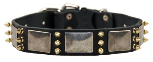 """Dean and Tyler """"DEVILISH DELLA"""", Dog Collar with Nickel Plates and Brass Spikes – Black – Size 30-Inch by 1-1/2-Inch – Fits Neck 28-Inch to 32-Inch"""