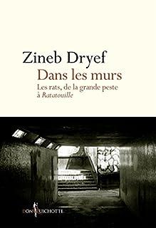 Dans les murs : les rats, de la grande peste à Ratatouille, Dryef, Zineb