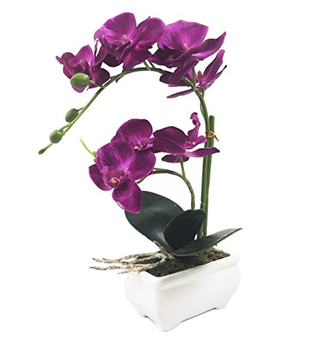 PEPPERLONELY Brand 13 H Artificial Ceramic Potted Plant Orchid, Purple