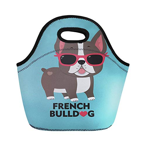 Tinmun Lunch Tote Bag Dog Breed French Bulldog in Glasses of Pink Color Reusable Neoprene Bags Insulated Thermal Picnic Handbag for Women Men