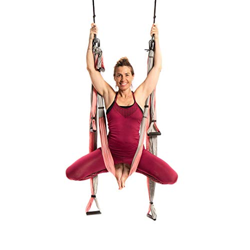 YOGABODY Yoga Trapeze (Official) with DVD, Baby Pink – Yoga Inversion Swing (Renewed)