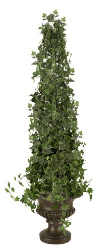 (English Ivy Topiary)