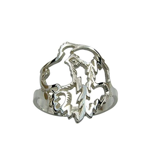 H&H jewellery Hovawart bague d'argent rhodi - 59; Bigouterie d'argent - Bague (titre 925/1000)