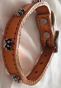 """OmniPet Signature Leather Dog Collar with Paw Ornaments, Metallic Apricot, 12"""""""