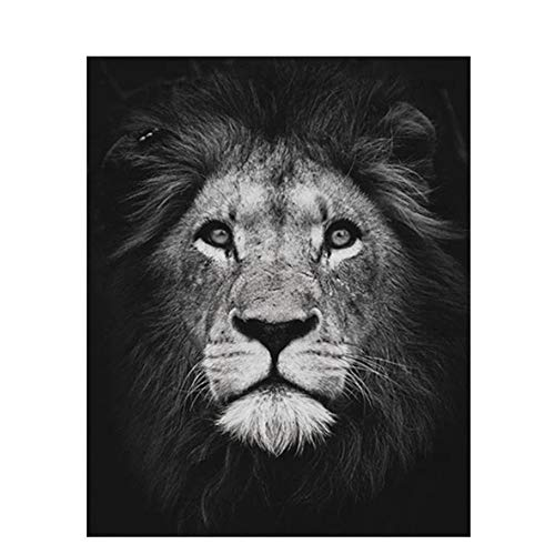 Qingyuge Digital Paintinglion Animals DIY Painting by Numbers Black White Calligraphy Painting Acrylic Paint On Canvas for Home Decor