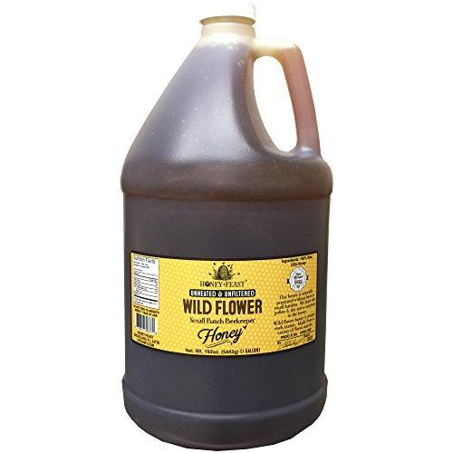Honey Jug (Gourmet Wild Flower Honey - 1 Gallon Jug. Raw, Unheated, Unfiltered USA Honey Feast brand honey. Hand crafted small batch beekeeper honey from Florida. USA Honey.)