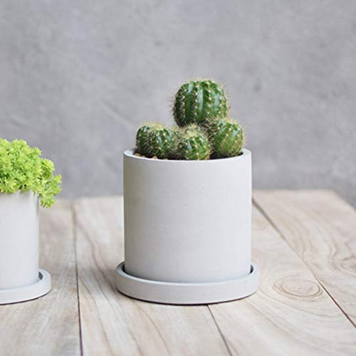 Concrete Planter Best Quality - Clay Molds - Silicone Concrete Mold Round Casting Concrete Planter Clay Craft Cactus Flower Cement Molds Home Decorating Tool - by GTIN - 1 PCs