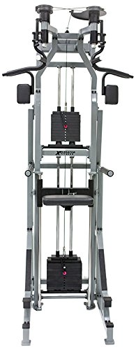 The Xelerator - Assisted and Unassisted Pull up / Chin up / Chest fly / Dip Machine by The Xelerator