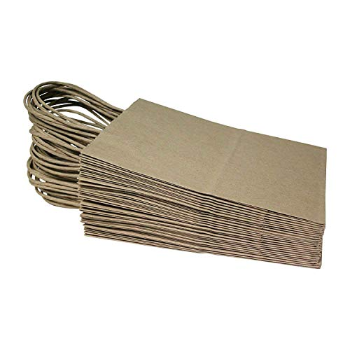 Paper Tote - 48 Pack Craft Brown Paper Bags Lunch Bags 4.4 X 8.3 X 13.7 Inches Craft DIY Supplies Paper Tote Bag