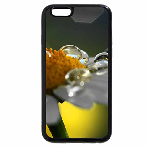 iPhone 6S / iPhone 6 Case (Black) Flower drops.