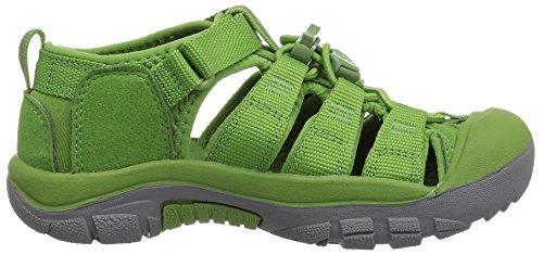 Keen Newport H2, Sandalias de Senderismo Unisex Niños Verde (Fluorite Green Fluorite Green)