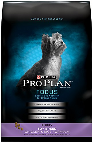 Purina Pro Plan Toy Breed Dry Puppy Food, FOCUS Chicken & Rice Formula - 5 lb. Bag (Best Puppy Food For Toy Breeds)